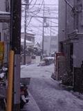 P2030228yuki4